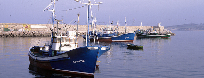 Nautica.pro, Curso Marinero Pescador